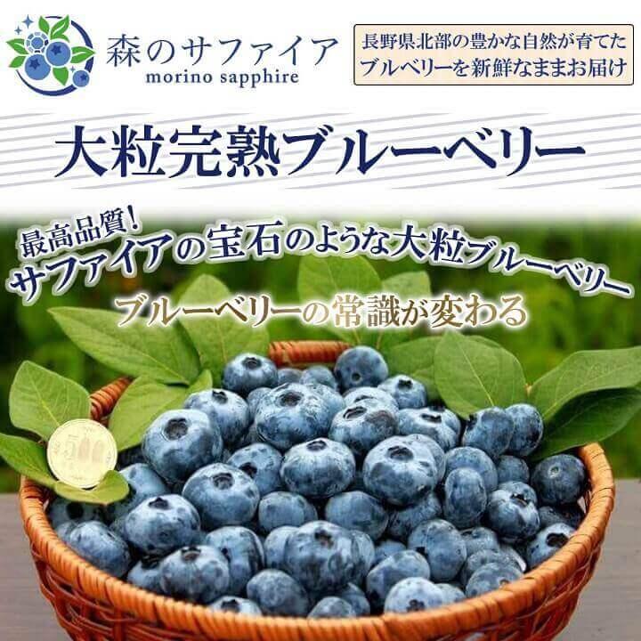 超大粒の無農薬国産ブルーベリーを販売しています。お取り寄せに最適です。