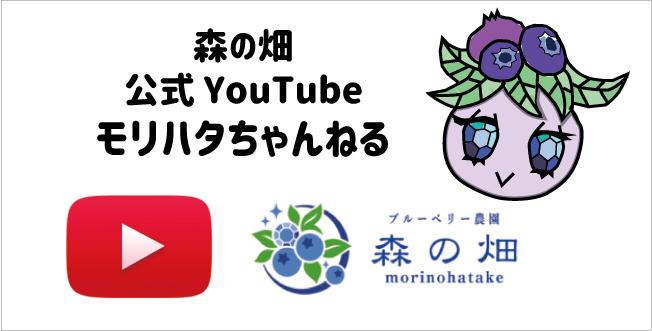 YouTubeで農園からの配信はじめました!